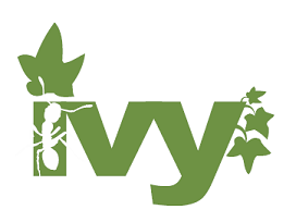 Ivy Dependency Manager